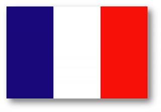Clases de francés para primaria y adultos.