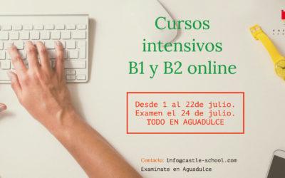 Cursos Intensivos de Verano Online B1 y B2